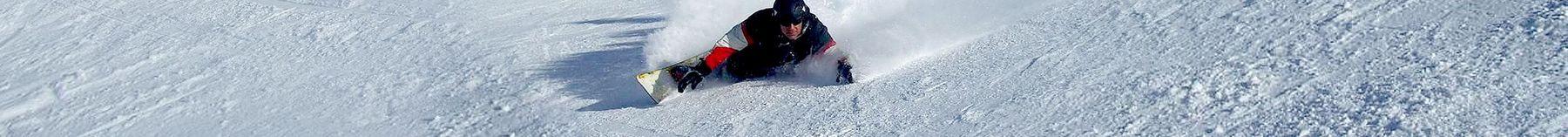 Alpinboards