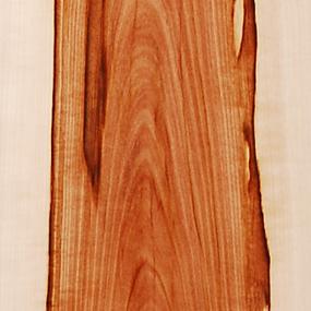 Wild Apple Tree - Custom Wooden Veneer Skateboard